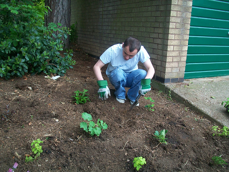 Learn household and garden maintenance skills
